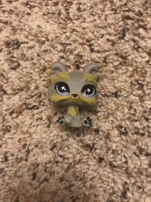 LPS Marbled Eye Yorkie RARE for Sale in Rolla, MO