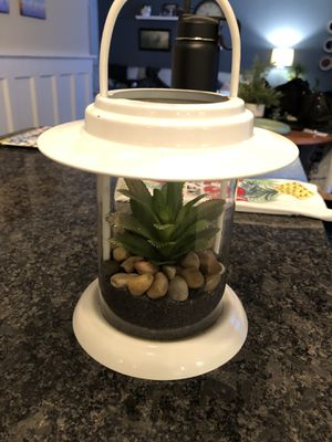 Custom terrarium lantern decor for Sale in Aurora, IL