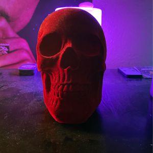 Suede Skull for Sale in Corona, CA