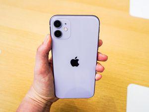 iPhone 11 for Sale in Farmville, VA