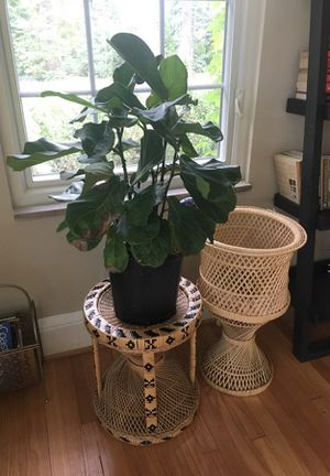 Wicker plant stand for Sale in Norfolk, VA