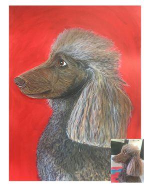 Pet Portraits by Alicia Guckenheimer for Sale in San Francisco, CA