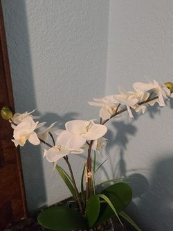 Silk orchid floral arrangment for Sale in Apopka,  FL