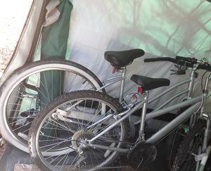 2 Bikes for Sale in White Cloud, MI