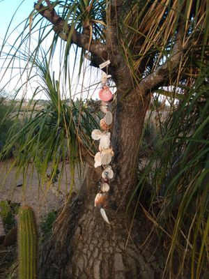 Shell and Bead wind chimes indoor outdoor decor for Sale in El Centro, CA