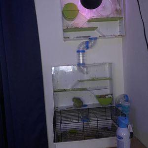 Hamster Cage Multi Level for Sale in Sloan, NV