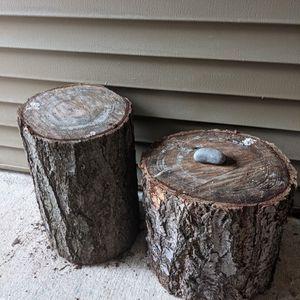 Free Stumps for Sale in Mukilteo, WA