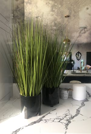 Fake plants for Sale in San Diego, CA