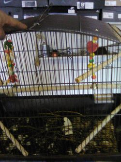 Two bird cages for Sale in Indianapolis,  IN