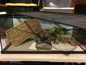 Reptile tank for Sale in Irving, TX