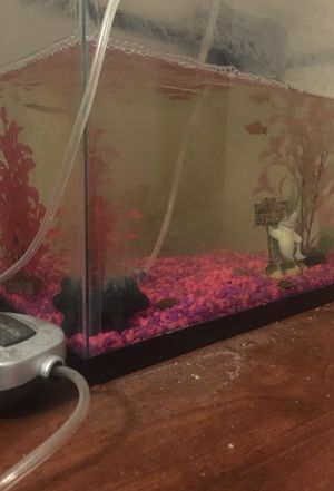 Fish tank for Sale in North Las Vegas, NV