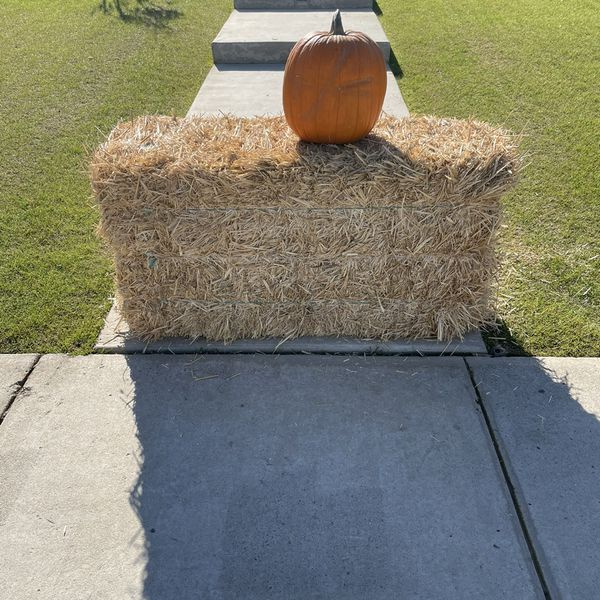 Free Bail of Hay and Pumpkin