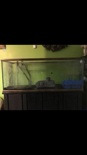 120 Gallon Tank Need Gone Asap for Sale in Hanover Park, IL