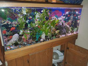 55 gallon aquarium for Sale in Bradenton, FL