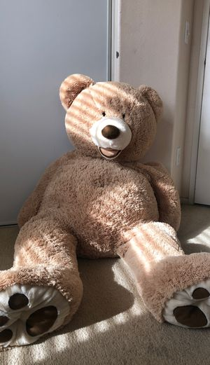 Extra Large Plushie Bear for Sale in Garden Grove, CA