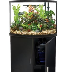 Fish Tank & Stand for Sale in Garden Grove, CA