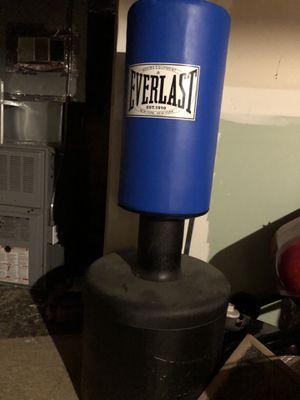 EverLast Boxing Bag for Sale in Detroit, MI