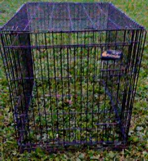 Large dog kennel/crate for Sale in Clarksville, OH