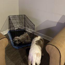 Dog crate 30 In for Sale in Atlanta,  GA