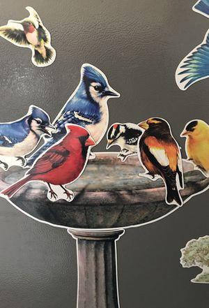 25-Piece Birds & Butterflies Asst Magnet Set for Sale in Quincy, MA