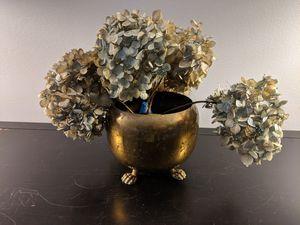 "5"" diameter Brass pot (flowers free) for Sale in Lincolnia, VA"