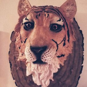 Beautiful Tiger Head In Excellent Condition for Sale in Virginia Beach, VA