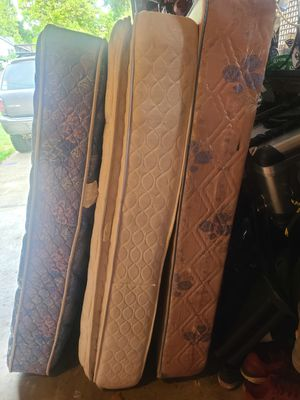 Free Box Spring & Mattresses - FREE for Sale in Portland, OR