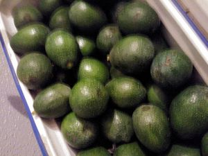 AVOCADOS. 2X$1 for Sale in Irwindale, CA