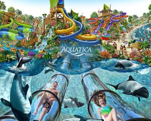 AQUATICA TICKETS FOR AUGUST, 50$ EACH for Sale in Orlando, FL