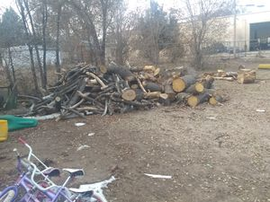 Firewood for Sale in Pueblo, CO