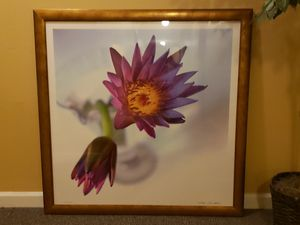 Large Frame Photo for Sale in Edmonds, WA