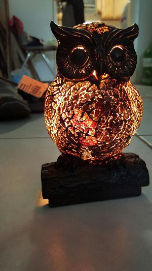 Owl table lamp for Sale in Skokie, IL