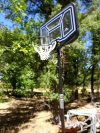 Lifetime basketball hoop for Sale in Fresno, CA