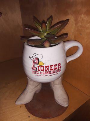 Pioneer cowboy boots mug succulent for Sale in Tucson, AZ