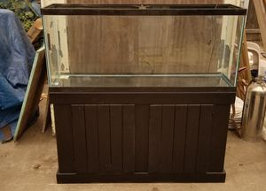 Big Fish tank/Stand comes with all in pics $475 for Sale in San Leandro, CA