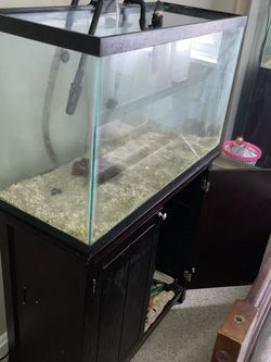 40 Gallon Fish Tank With Stand for Sale in Silver Spring,  MD