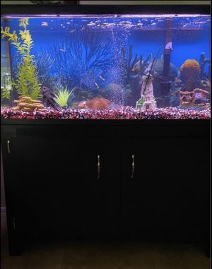 Fish Tank 45 Inch for Sale in Haines City, FL