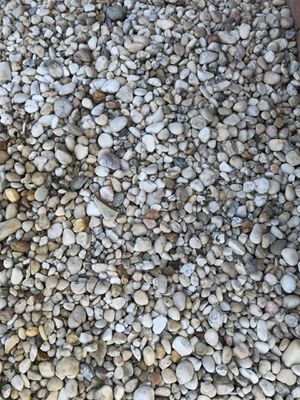Rocks for yard for Sale in FL, US