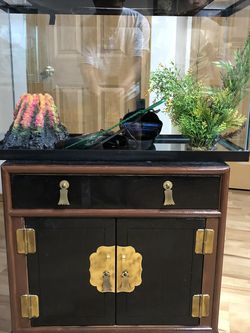 30 Gallon Fish Tank And Stand for Sale in Hillsboro,  OR