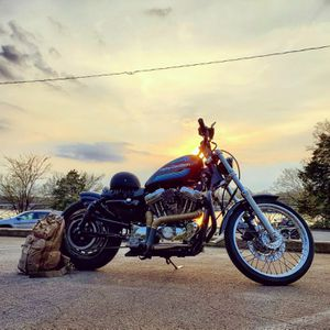 2001 Harley-Davidson 1200 Custom for Sale in Mt. Juliet, TN