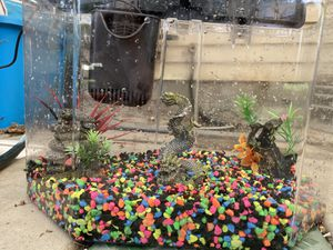 Fish tank for Sale in Salt Lake City, UT