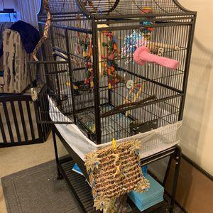 Birdcage for Sale in Forestville, MD