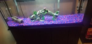 55 gallon fish tank for Sale in Waldorf, MD