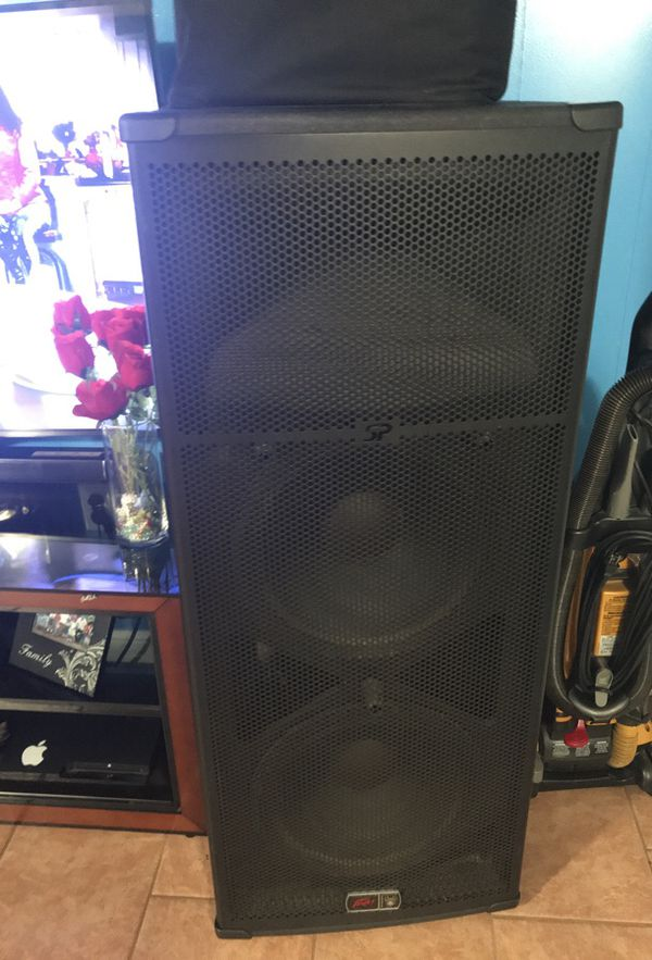 Two Peavey sp6 dj speakers very loud