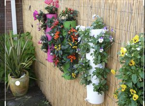 Flower pots called polanter look up great ideas on YouTube for Sale in Cuyahoga Heights, OH