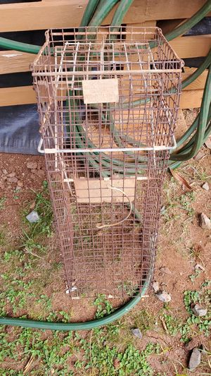 Tomahawk brand live animal trap for Sale in Aiea, HI