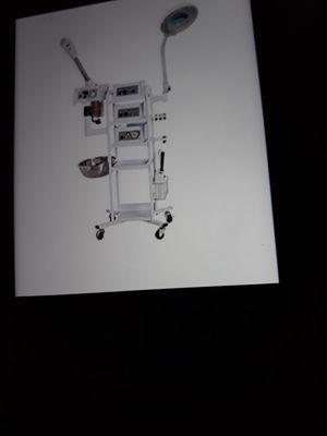 11 in 1 T3 Multifunfion Facial Machine Steamer Ozone Skin Machine for Sale in Maplewood, NJ