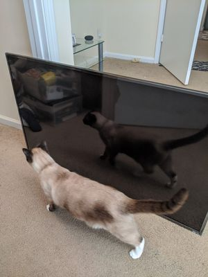 Roku TCL 48in Led TV for Sale in Lawrenceville, GA