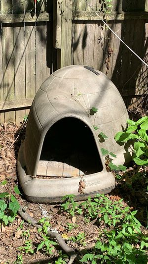 1 med and 1 large dog house 1 for Sale in Englewood, NJ