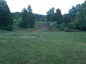 5 cedar tress for Sale in Knoxville, TN